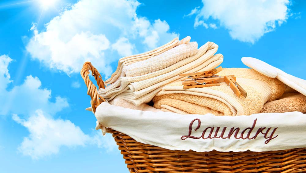 Laundry and Dry Cleaning